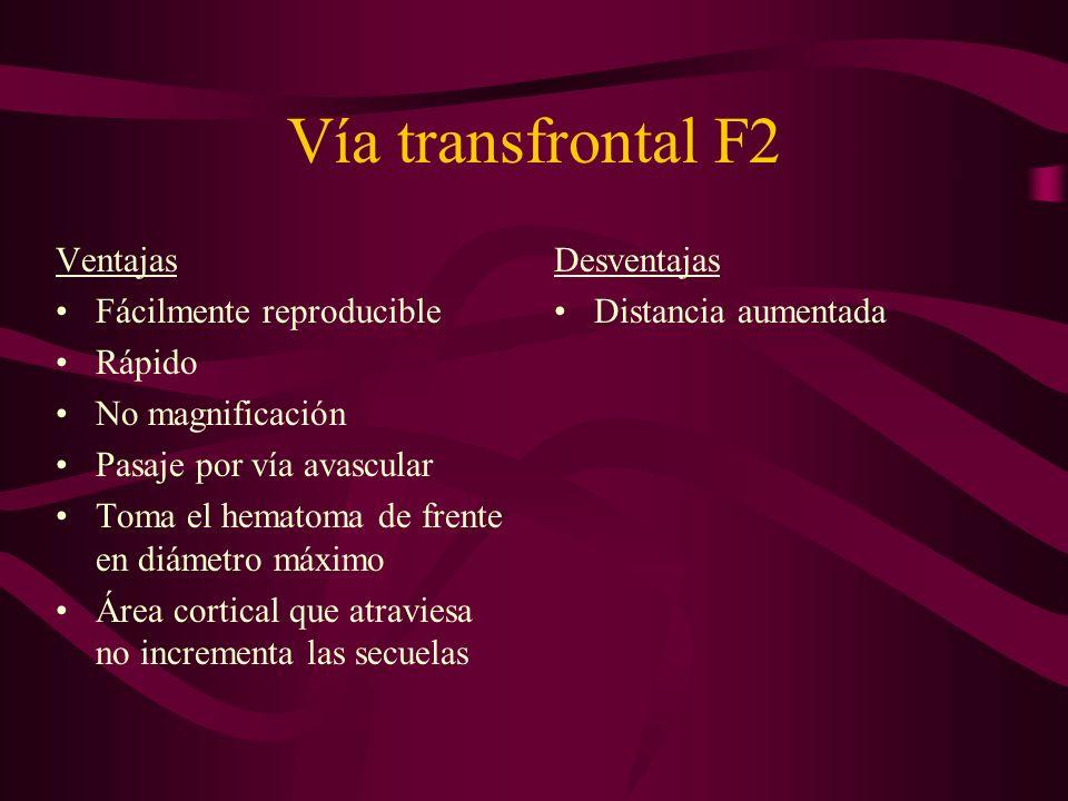 Vía transfrontal F2 Ventajas Fácilmente reproducible Rápido