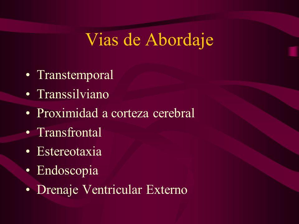 Vias de Abordaje Transtemporal Transsilviano