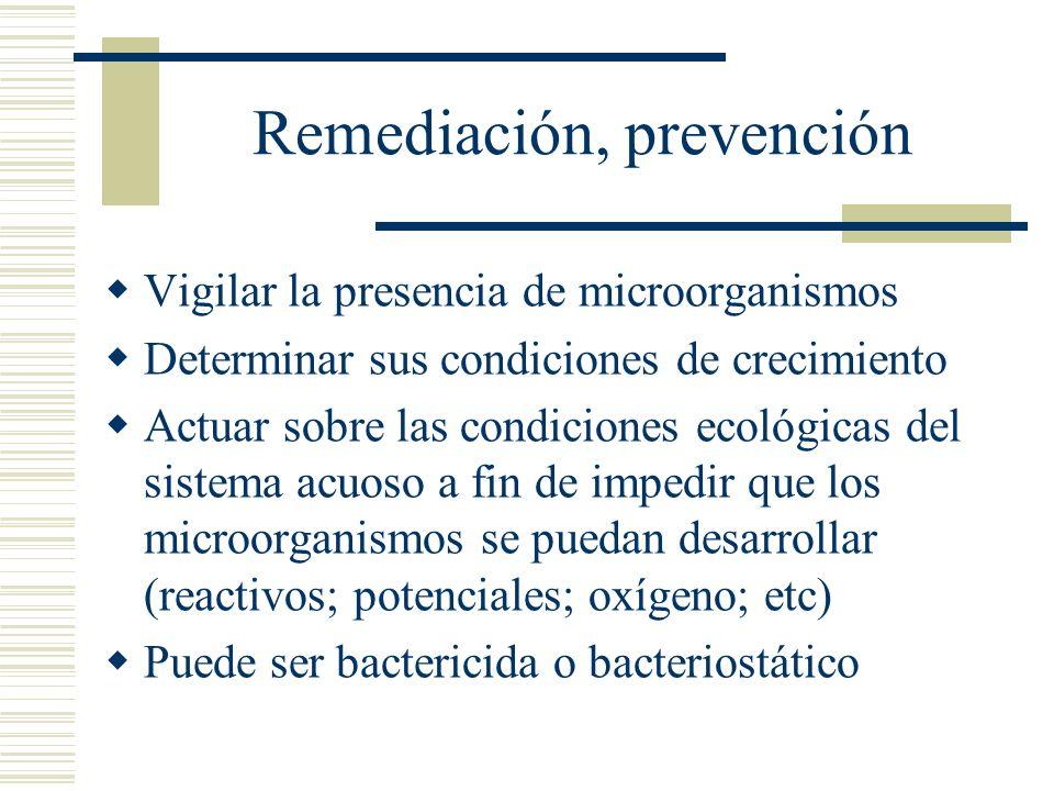 Remediación, prevención