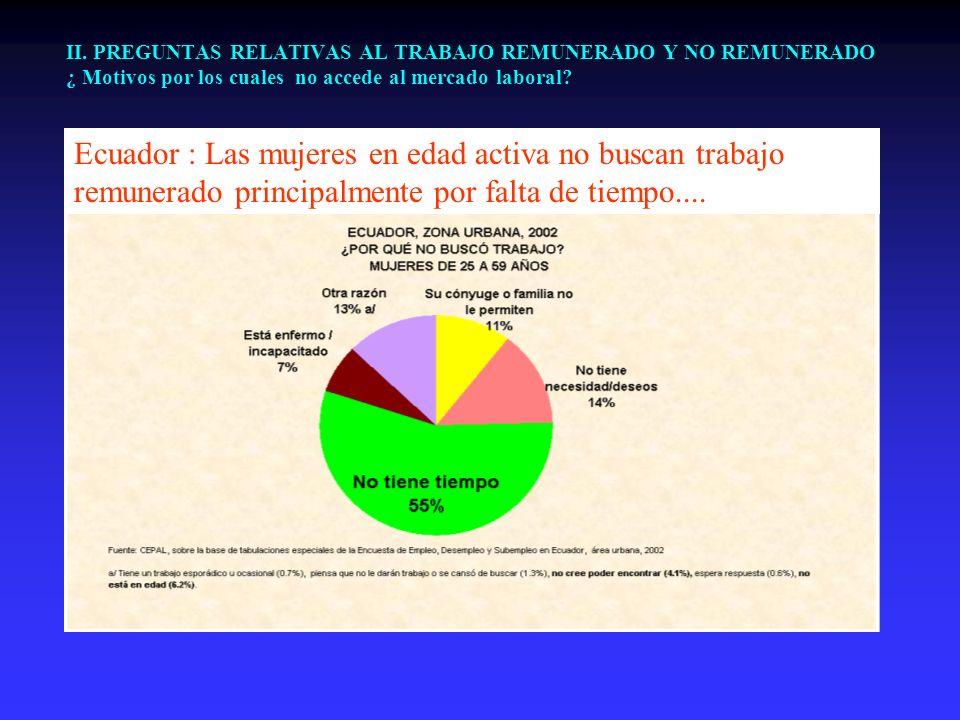 II. PREGUNTAS RELATIVAS AL TRABAJO REMUNERADO Y NO REMUNERADO ¿ Motivos por los cuales no accede al mercado laboral