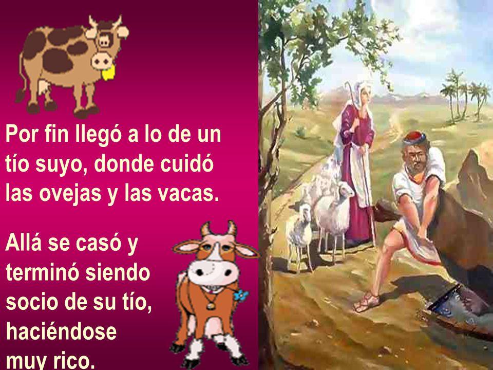 Por fin llegó a lo de untío suyo, donde cuidó. las ovejas y las vacas. Allá se casó y. terminó siendo.