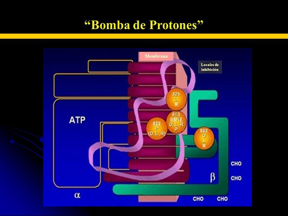 INHIBIDORES DE LA BOMBA DE PROTONES