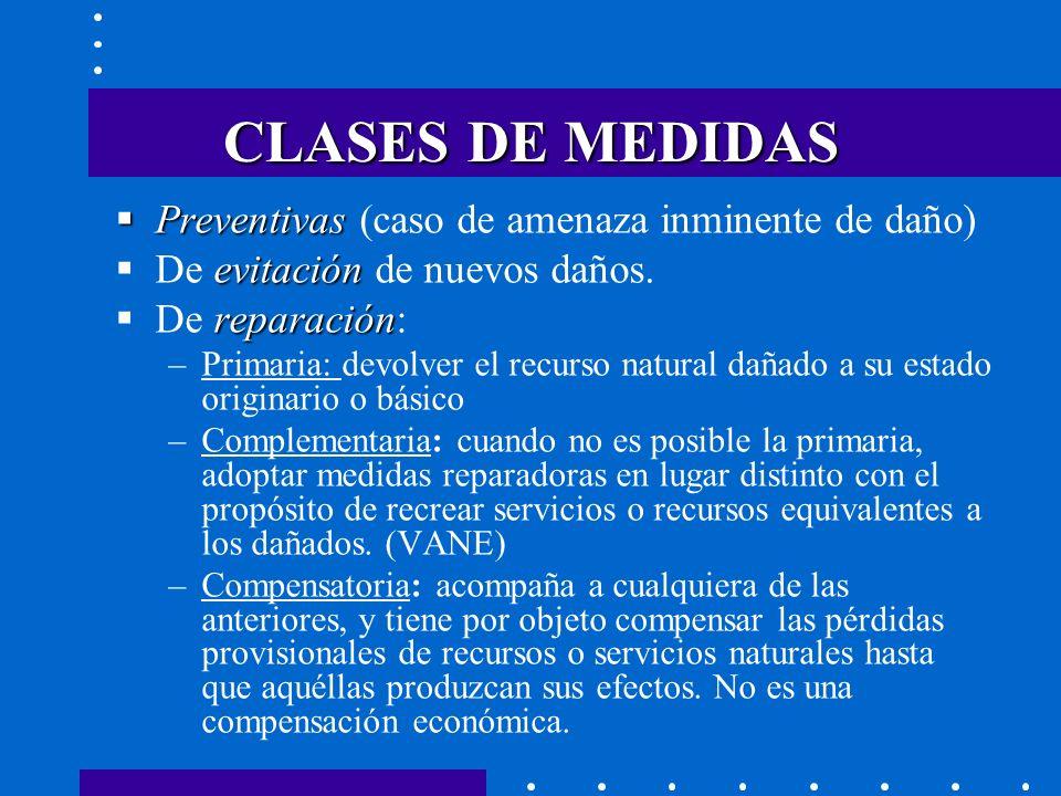 CLASES DE MEDIDAS Preventivas (caso de amenaza inminente de daño)