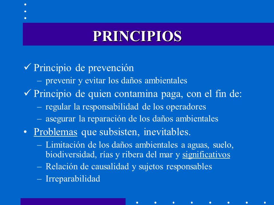 PRINCIPIOS Principio de prevención