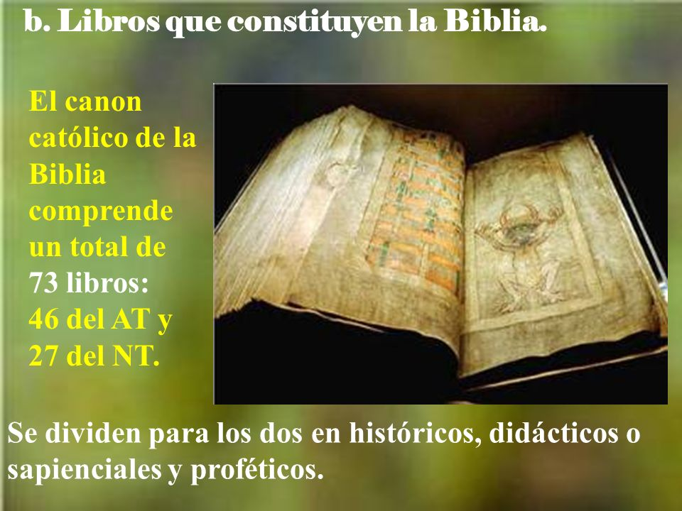b. Libros que constituyen la Biblia.