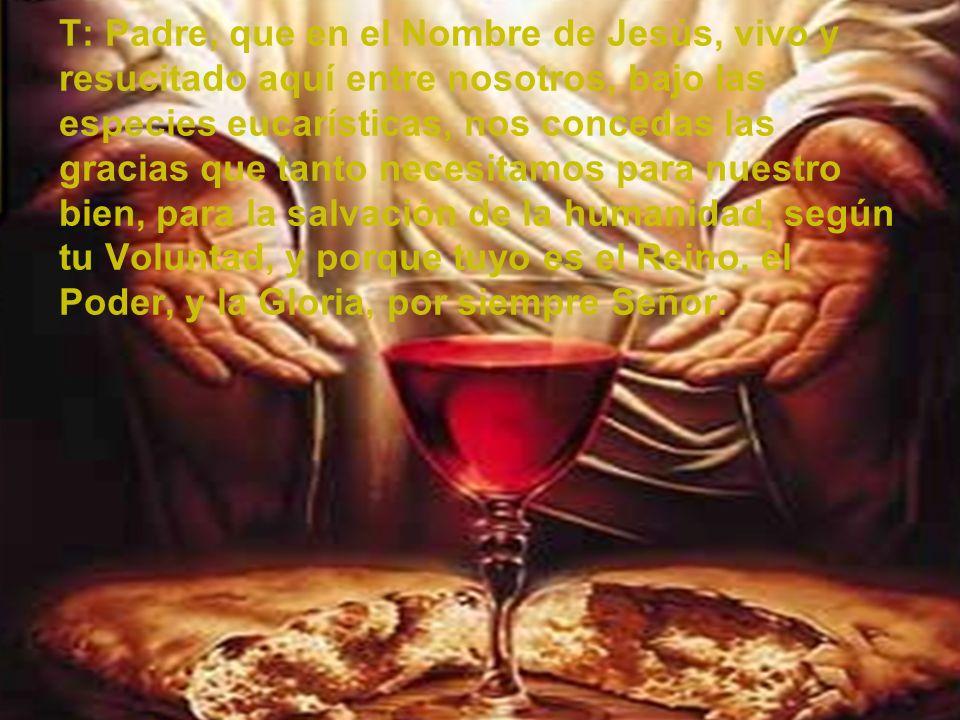 T: Padre, que en el Nombre de Jesús, vivo y resucitado aquí entre nosotros, bajo las especies eucarísticas, nos concedas las gracias que tanto necesitamos para nuestro bien, para la salvación de la humanidad, según tu Voluntad, y porque tuyo es el Reino, el Poder, y la Gloria, por siempre Señor.