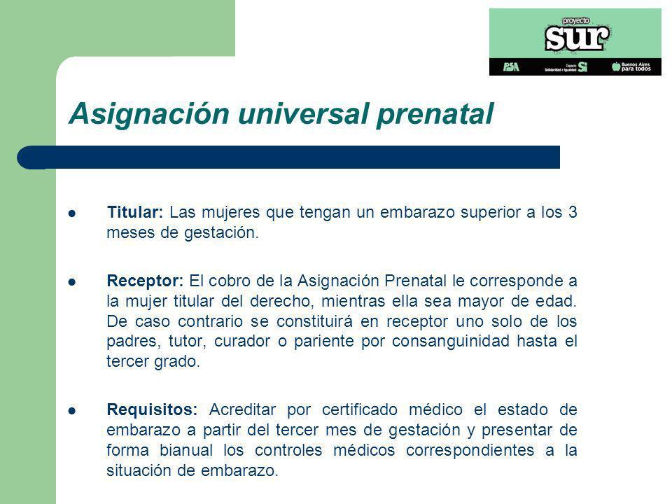 Asignación universal prenatal