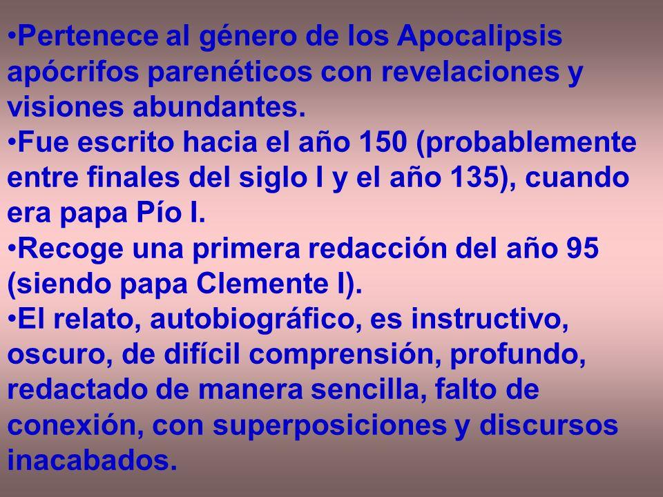 Pertenece al género de los Apocalipsis apócrifos parenéticos con revelaciones y visiones abundantes.