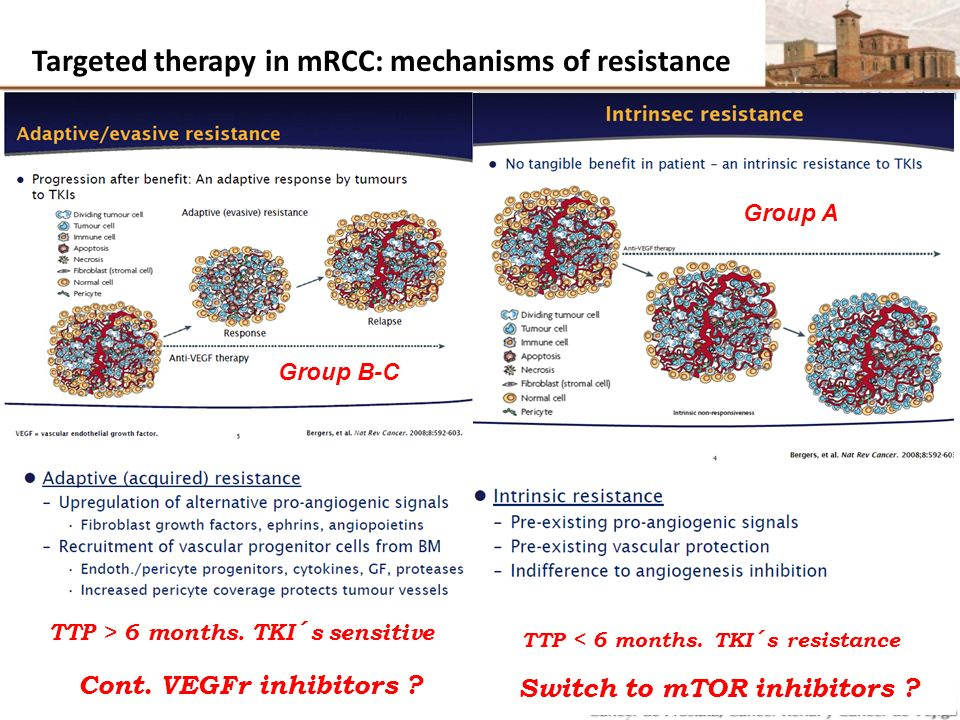 Targeted therapy in mRCC: mechanisms of resistance