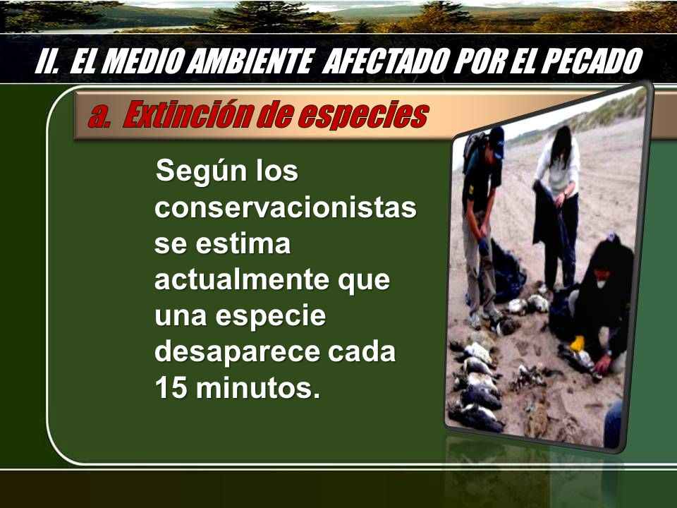 II. EL MEDIO AMBIENTE AFECTADO POR EL PECADO