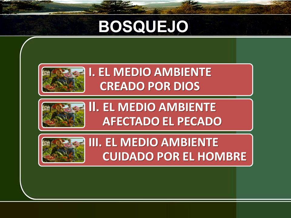 BOSQUEJO III. EL MEDIO AMBIENTE CUIDADO POR EL HOMBRE