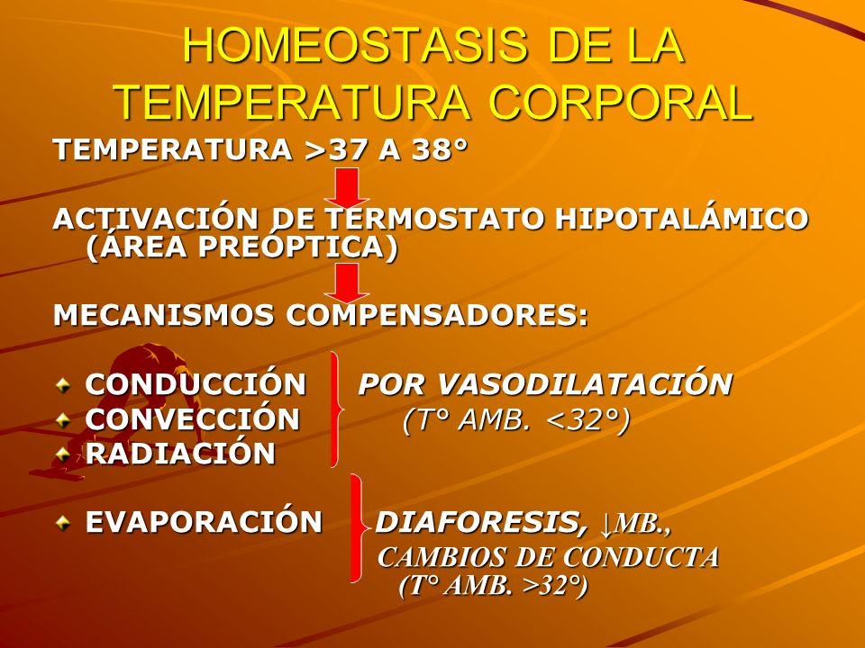 HOMEOSTASIS DE LA TEMPERATURA CORPORAL
