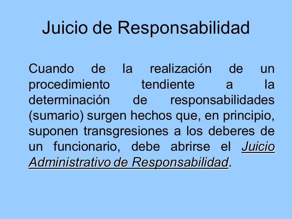 Juicio de Responsabilidad