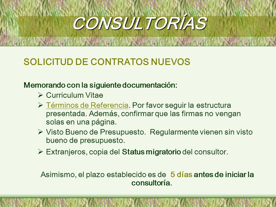CONSULTORÍAS SOLICITUD DE CONTRATOS NUEVOS