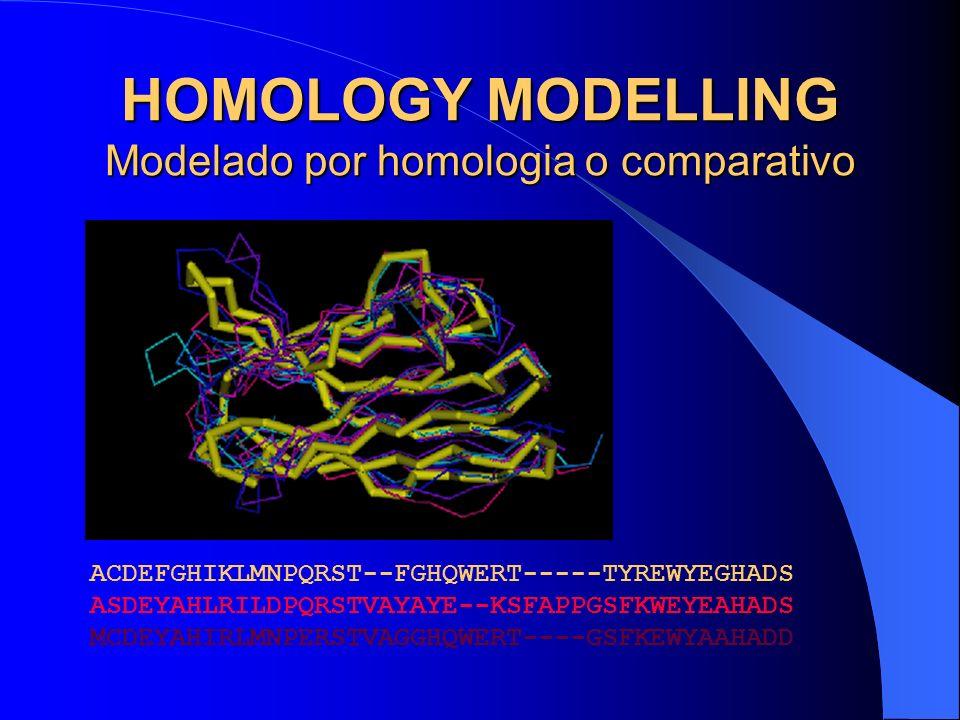 HOMOLOGY MODELLING Modelado por homologia o comparativo
