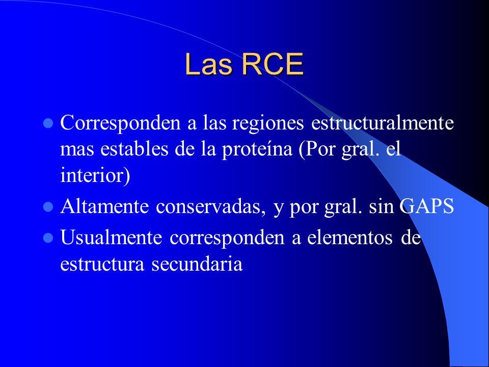 Las RCE Corresponden a las regiones estructuralmente mas estables de la proteína (Por gral. el interior)