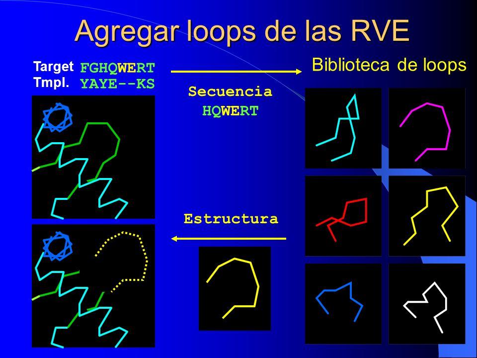 Agregar loops de las RVE
