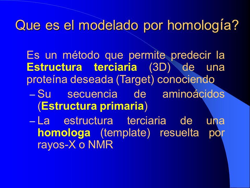 Que es el modelado por homología