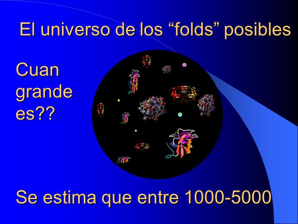El universo de los folds posibles