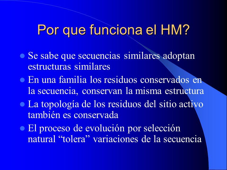 Por que funciona el HM Se sabe que secuencias similares adoptan estructuras similares.