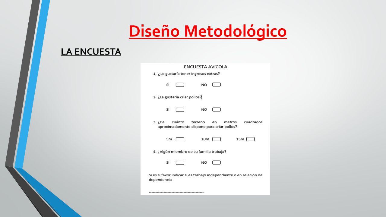 Diseño Metodológico LA ENCUESTA