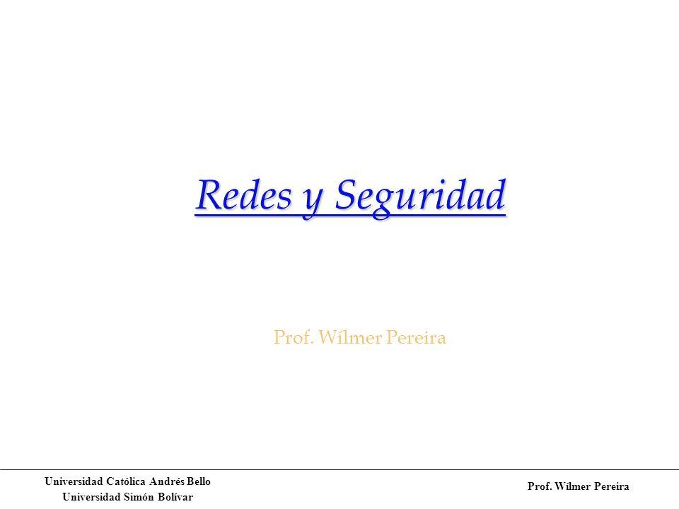 Redes y Seguridad Prof. Wílmer Pereira
