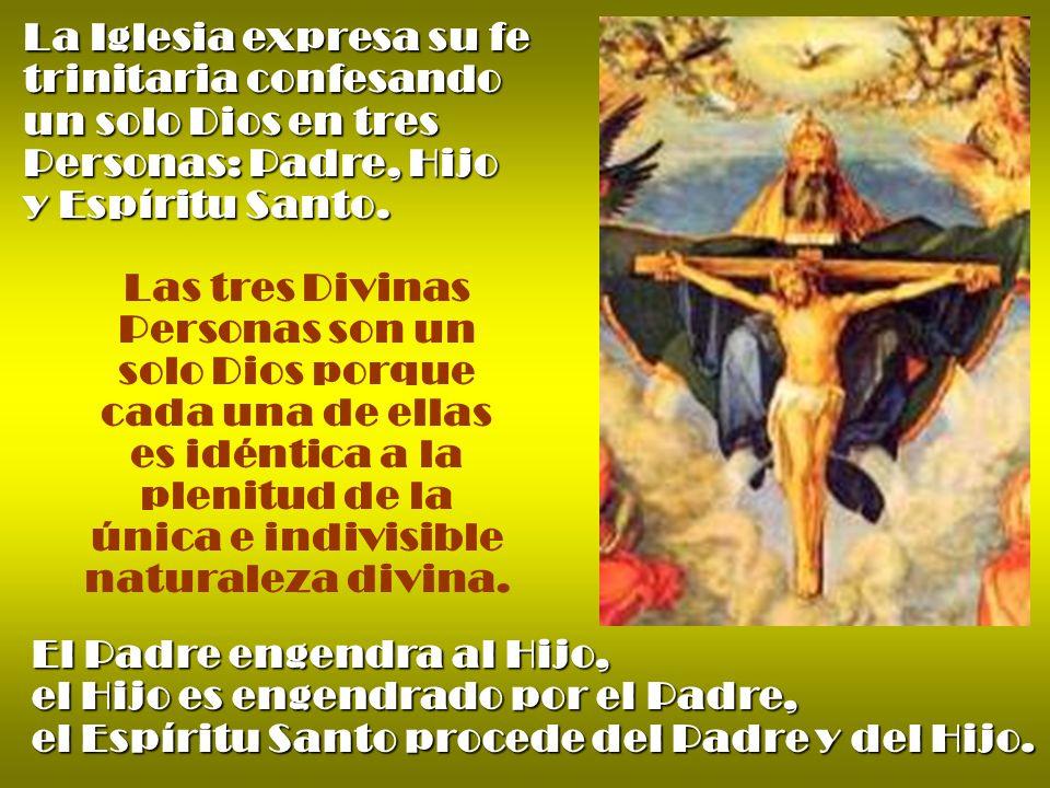 La Iglesia expresa su fe trinitaria confesando un solo Dios en tres Personas: Padre, Hijo y Espíritu Santo.