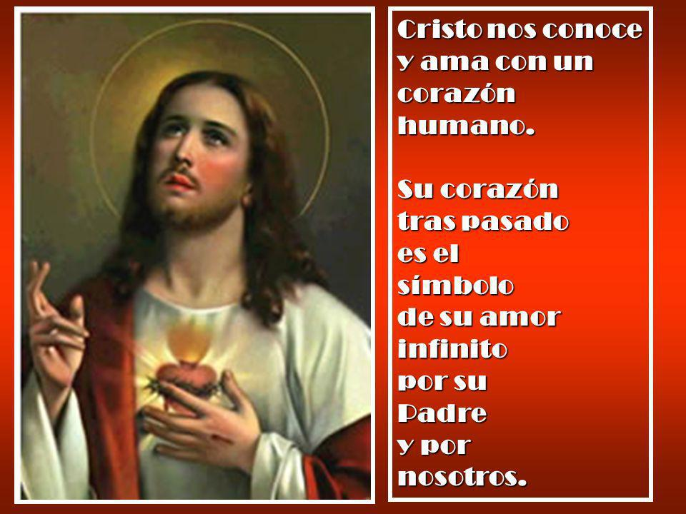 Cristo nos conoce y ama con un corazón humano.
