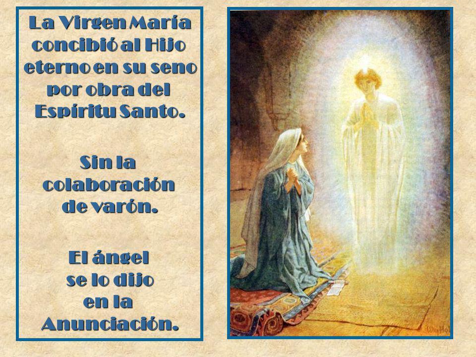 La Virgen María concibió al Hijo. eterno en su seno. por obra del. Espíritu Santo. Sin la. colaboración.
