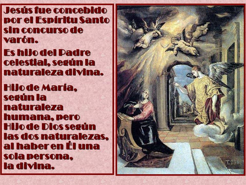 Jesús fue concebido por el Espíritu Santo sin concurso de varón.