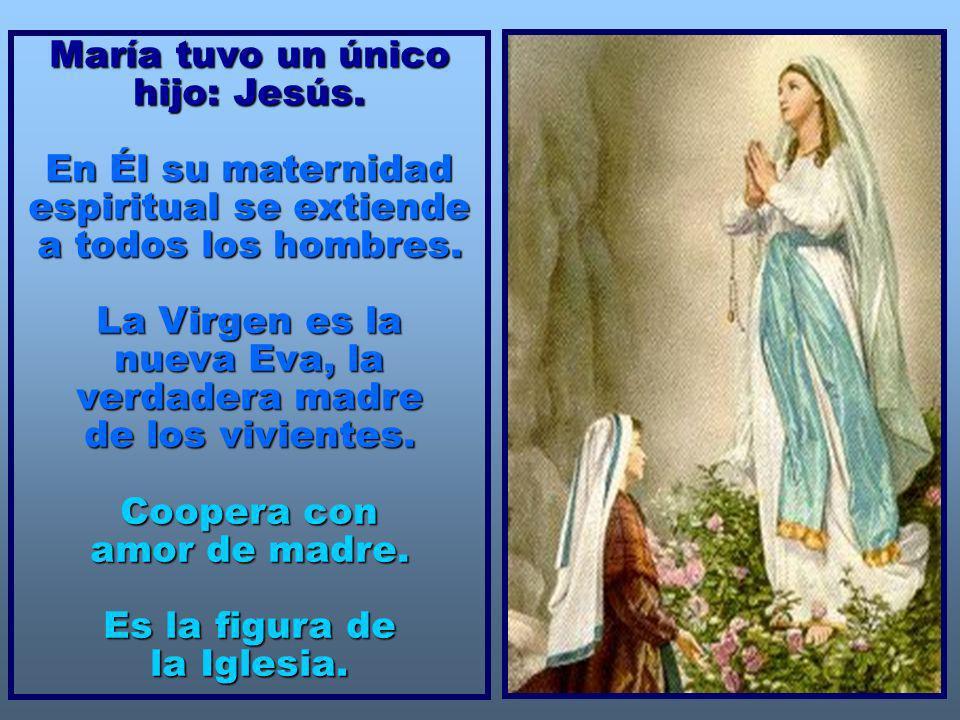 María tuvo un único hijo: Jesús.