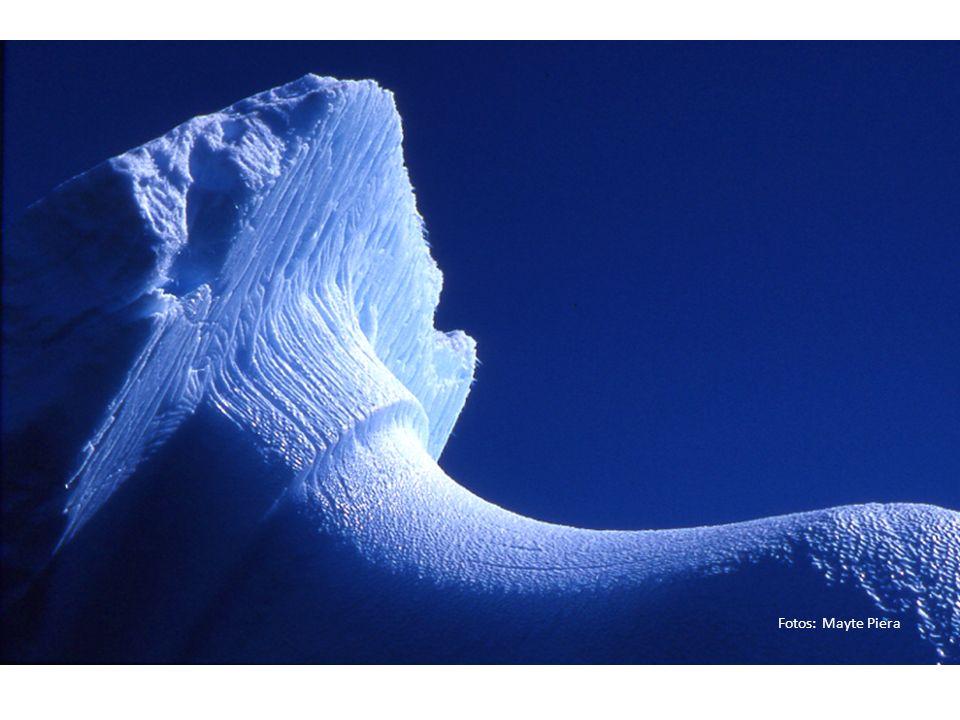 Rutas matemáticas por la Antártida