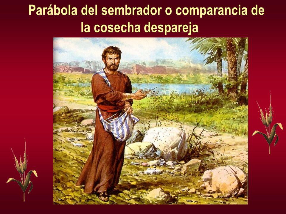 Parábola del sembrador o comparancia de