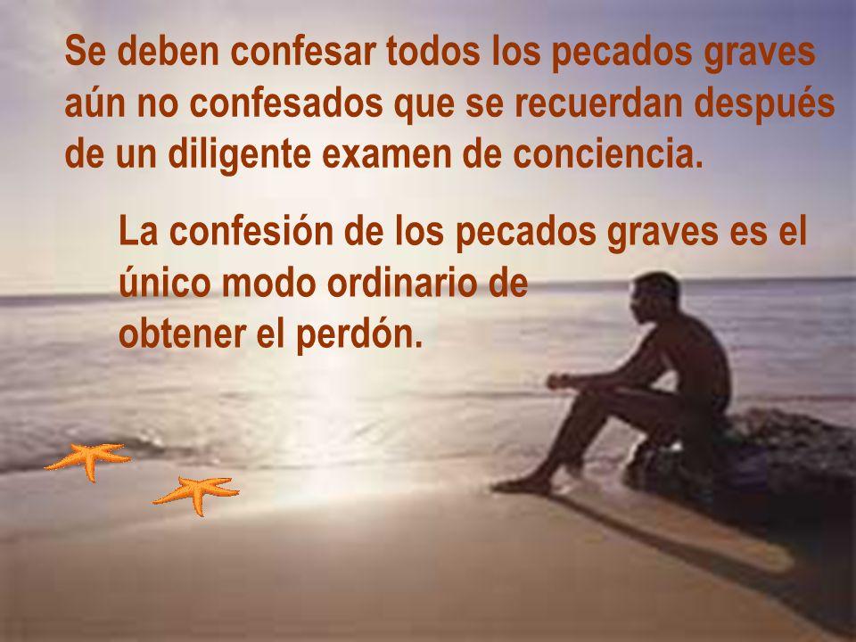 Se deben confesar todos los pecados graves