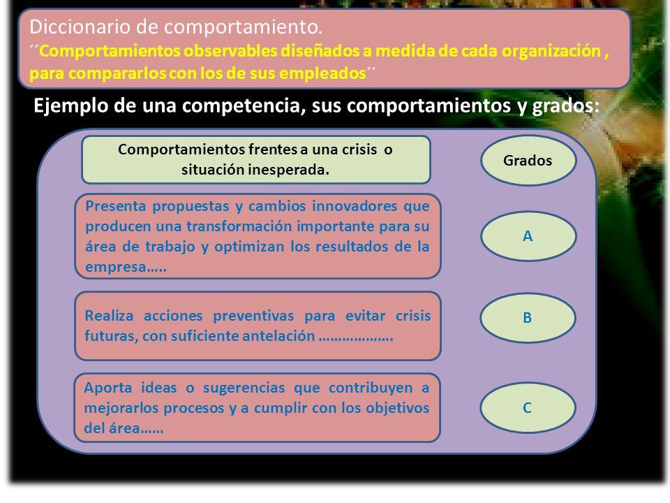 Ejemplo de una competencia, sus comportamientos y grados: