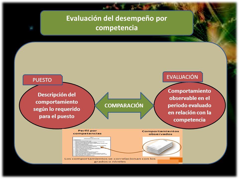 Evaluación del desempeño por competencia