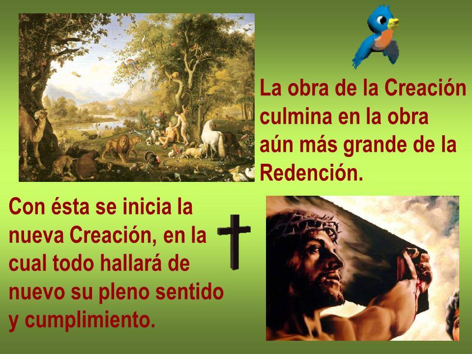 La obra de la Creaciónculmina en la obra. aún más grande de la. Redención. Con ésta se inicia la. nueva Creación, en la.
