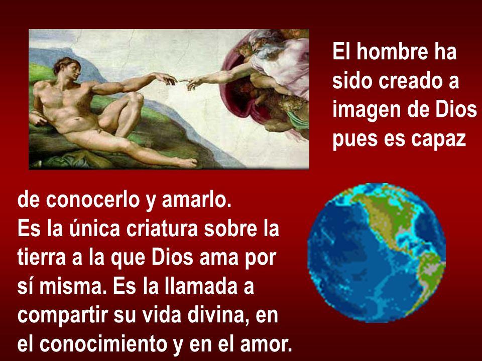 El hombre hasido creado a. imagen de Dios. pues es capaz. de conocerlo y amarlo. Es la única criatura sobre la.