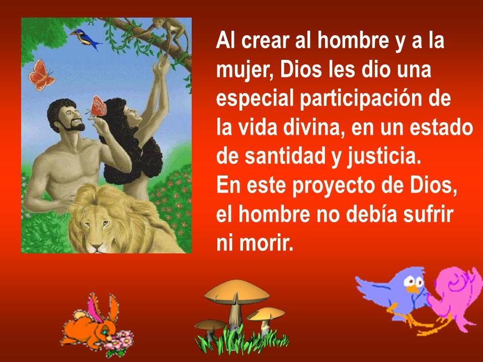 Al crear al hombre y a lamujer, Dios les dio una. especial participación de. la vida divina, en un estado.