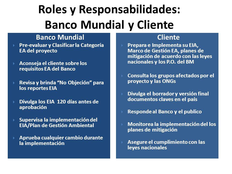 Roles y Responsabilidades: Banco Mundial y Cliente