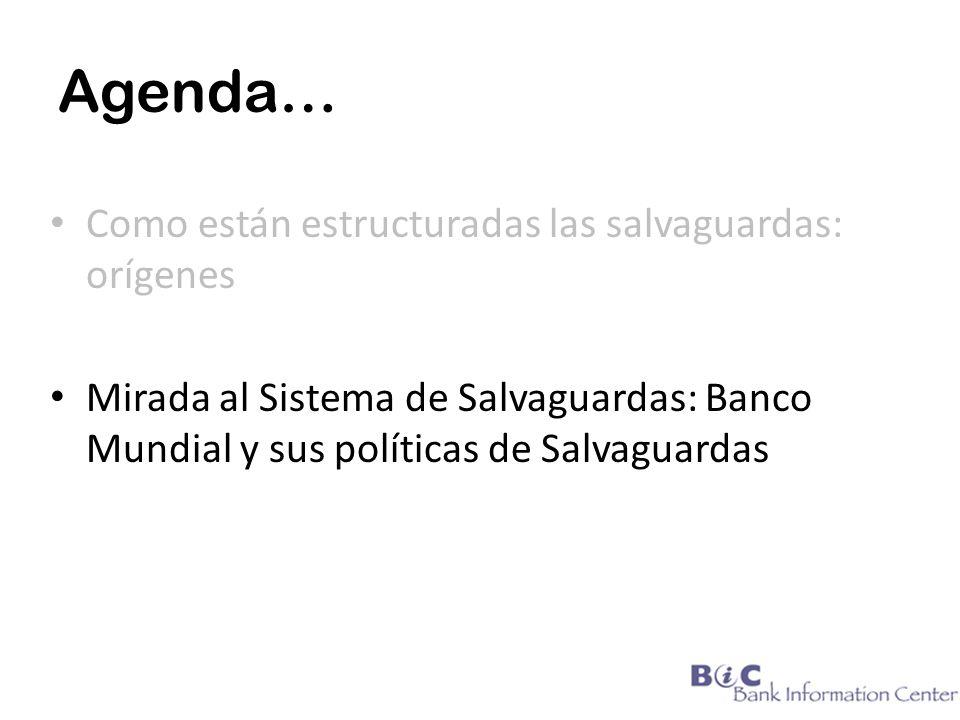 Agenda… Como están estructuradas las salvaguardas: orígenes