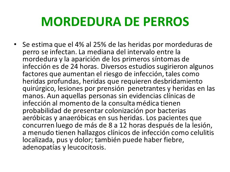 MORDEDURA DE PERROS