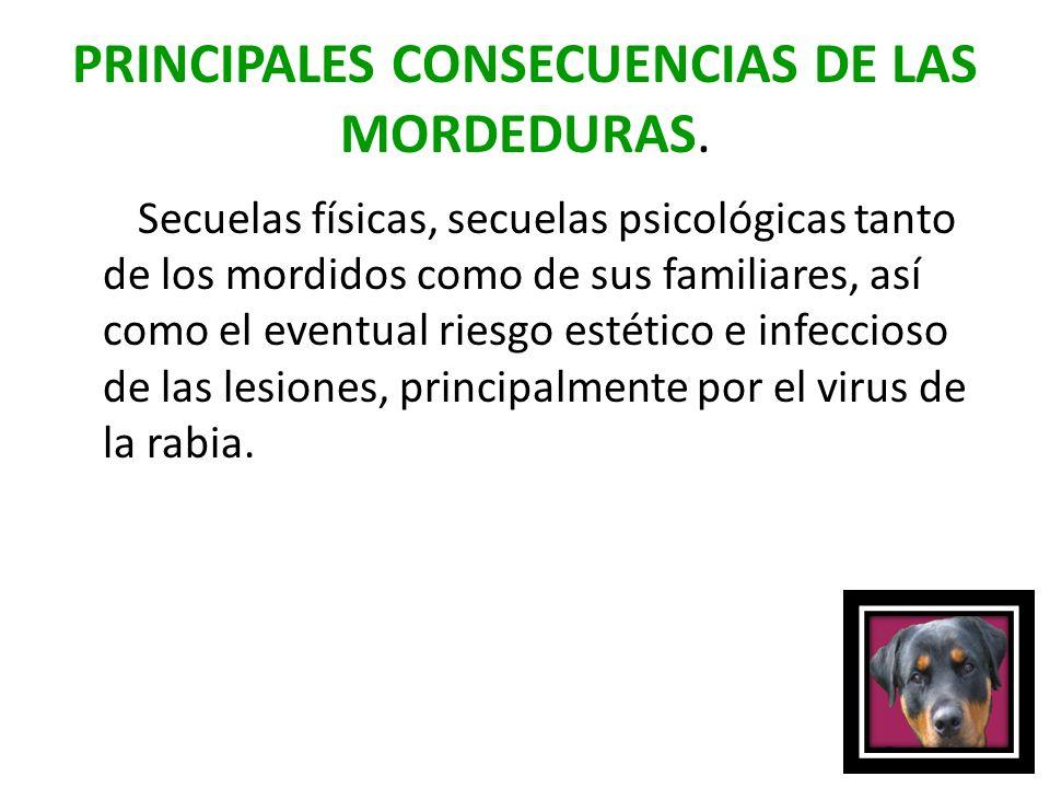 PRINCIPALES CONSECUENCIAS DE LAS MORDEDURAS.