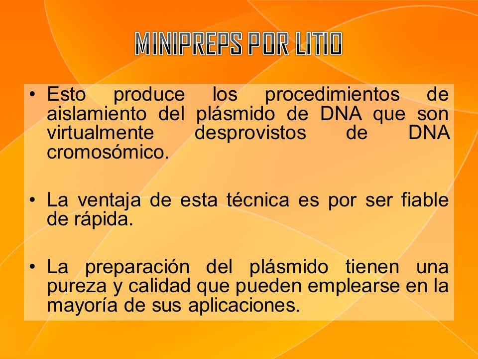 MINIPREPS POR LITIO Esto produce los procedimientos de aislamiento del plásmido de DNA que son virtualmente desprovistos de DNA cromosómico.