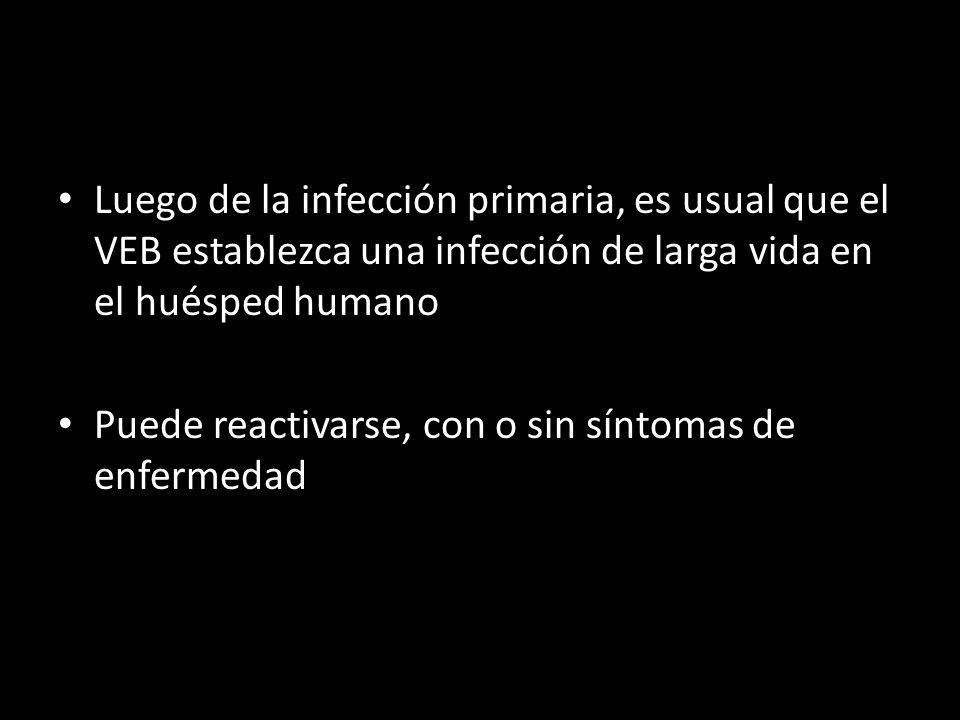 Luego de la infección primaria, es usual que el VEB establezca una infección de larga vida en el huésped humano