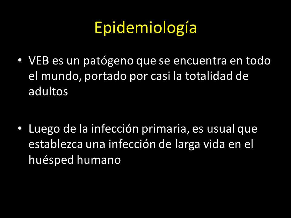 Epidemiología VEB es un patógeno que se encuentra en todo el mundo, portado por casi la totalidad de adultos.