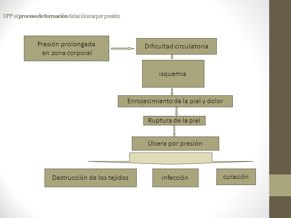 UPP: el proceso de formación de las úlceras por presión