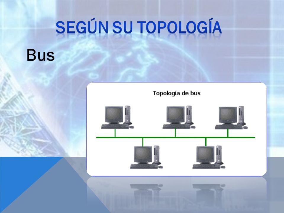 Según su topología Bus
