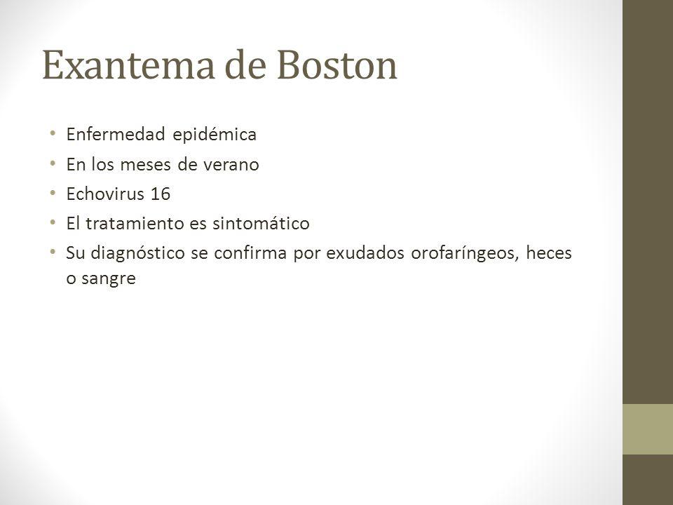 Exantema de Boston Enfermedad epidémica En los meses de verano
