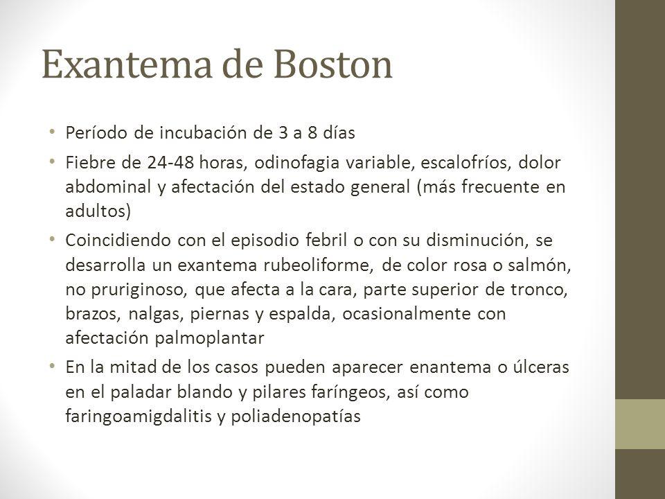 Exantema de Boston Período de incubación de 3 a 8 días